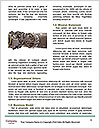 0000087907 Word Templates - Page 4