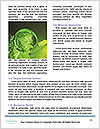 0000087912 Word Template - Page 4