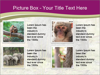 Wombat in Cradle PowerPoint Templates - Slide 14