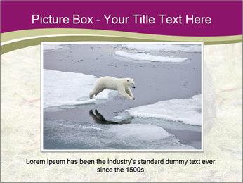 Wombat in Cradle PowerPoint Templates - Slide 15