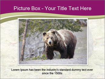 Wombat in Cradle PowerPoint Templates - Slide 16