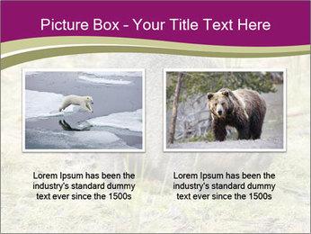 Wombat in Cradle PowerPoint Templates - Slide 18