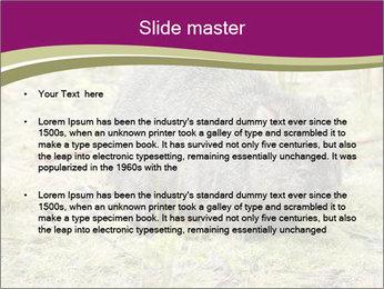 Wombat in Cradle PowerPoint Templates - Slide 2