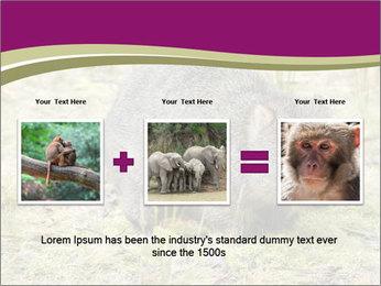 Wombat in Cradle PowerPoint Templates - Slide 22