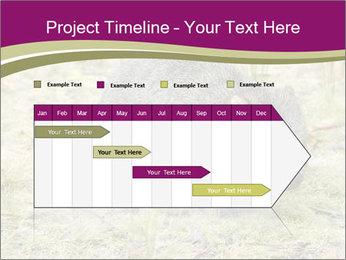 Wombat in Cradle PowerPoint Templates - Slide 25