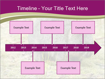 Wombat in Cradle PowerPoint Templates - Slide 28