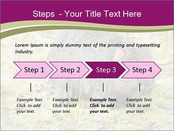 Wombat in Cradle PowerPoint Templates - Slide 4