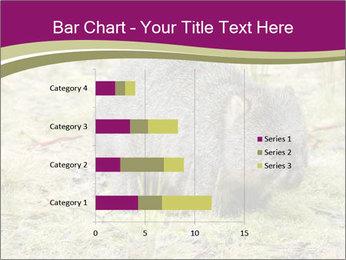Wombat in Cradle PowerPoint Templates - Slide 52