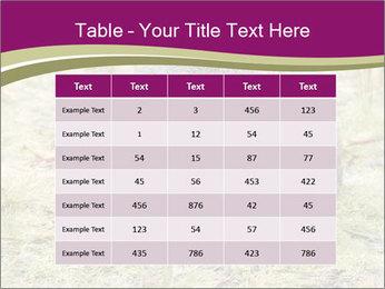 Wombat in Cradle PowerPoint Templates - Slide 55