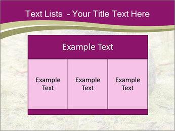 Wombat in Cradle PowerPoint Templates - Slide 59