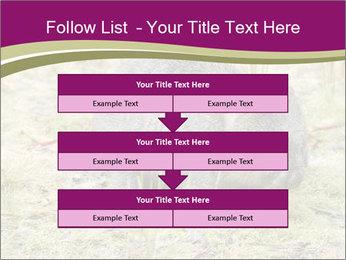 Wombat in Cradle PowerPoint Templates - Slide 60