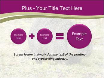 Wombat in Cradle PowerPoint Templates - Slide 75