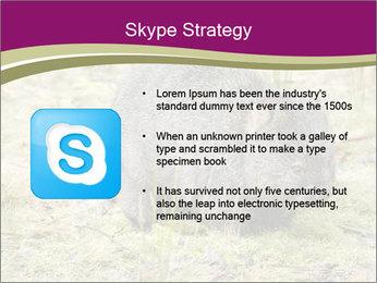 Wombat in Cradle PowerPoint Templates - Slide 8
