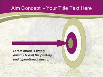 Wombat in Cradle PowerPoint Templates - Slide 83