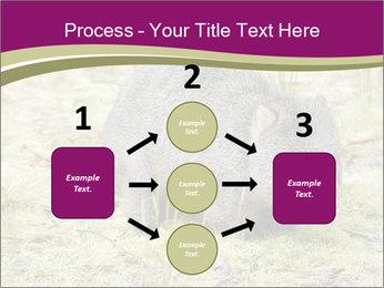 Wombat in Cradle PowerPoint Templates - Slide 92