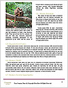 0000087916 Word Template - Page 4