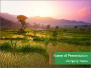 Bali PowerPoint Template
