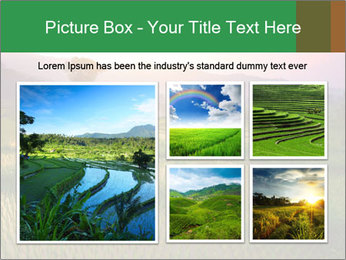 Bali PowerPoint Templates - Slide 19