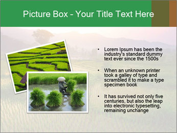 Bali PowerPoint Templates - Slide 20