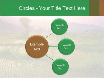 Bali PowerPoint Template - Slide 79