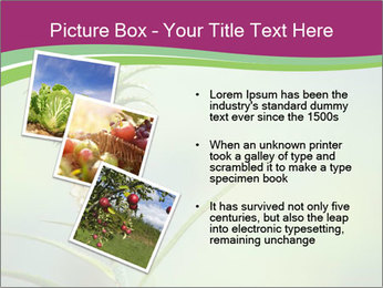 Little pineapple PowerPoint Templates - Slide 17