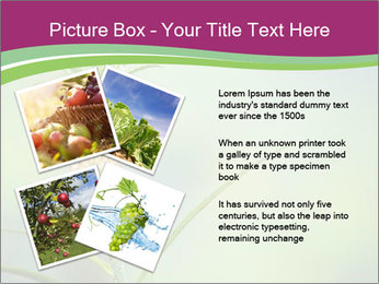 Little pineapple PowerPoint Templates - Slide 23