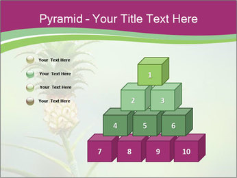Little pineapple PowerPoint Templates - Slide 31