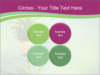 Little pineapple PowerPoint Templates - Slide 38