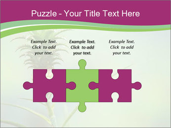 Little pineapple PowerPoint Templates - Slide 42