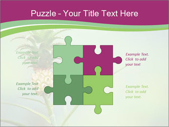 Little pineapple PowerPoint Templates - Slide 43