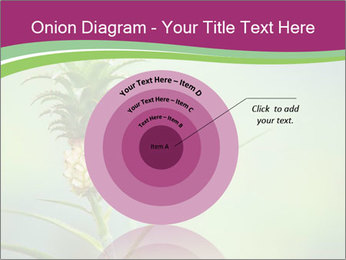 Little pineapple PowerPoint Templates - Slide 61