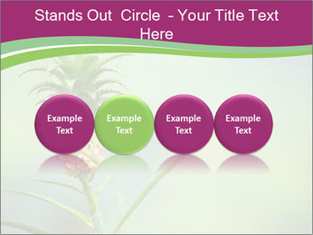 Little pineapple PowerPoint Templates - Slide 76