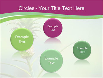 Little pineapple PowerPoint Templates - Slide 77