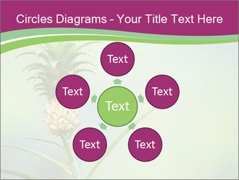 Little pineapple PowerPoint Templates - Slide 78
