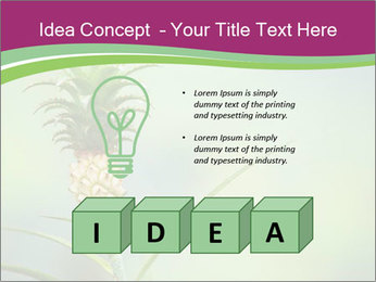 Little pineapple PowerPoint Templates - Slide 80