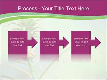 Little pineapple PowerPoint Templates - Slide 88