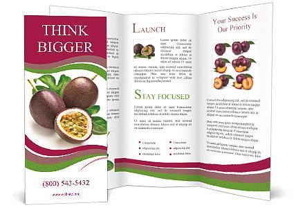 0000087947 Brochure Template