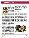0000087947 Word Templates - Page 3