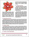 0000087947 Word Templates - Page 4