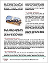 0000087951 Word Templates - Page 4
