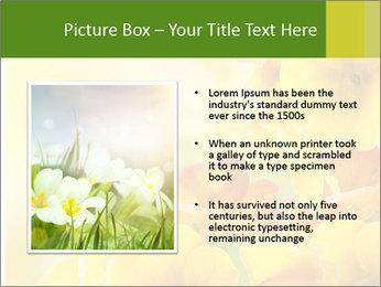 Yellow flowers PowerPoint Template - Slide 13