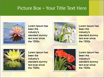 Yellow flowers PowerPoint Template - Slide 14