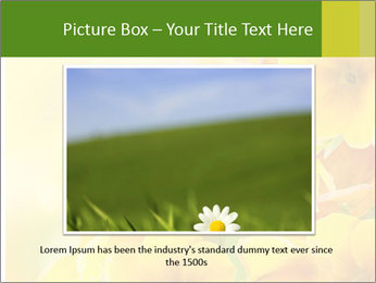Yellow flowers PowerPoint Template - Slide 15