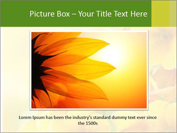 Yellow flowers PowerPoint Template - Slide 16