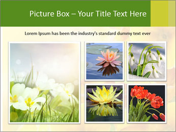 Yellow flowers PowerPoint Template - Slide 19