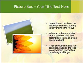 Yellow flowers PowerPoint Template - Slide 20