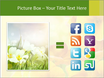 Yellow flowers PowerPoint Template - Slide 21
