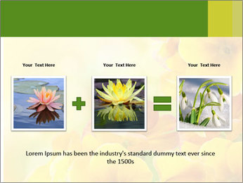 Yellow flowers PowerPoint Template - Slide 22