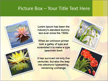 Yellow flowers PowerPoint Template - Slide 24