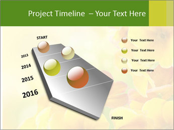 Yellow flowers PowerPoint Template - Slide 26